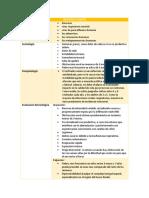 PATOLOGIAS RESPIRATORIO.docx