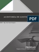 3325 Archivo Auditoria de Gestion-1551619664