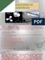 Amonicaco Ultimo