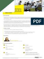 EY-cursos-noviembre-2017-sunafil.pdf