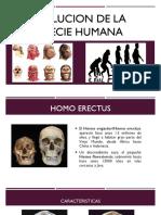 Evolucion de La Especie Humana
