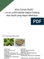 Simplisia Cortex (Kulit)
