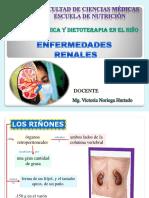 Clase 13 Enfermedad Renal Infantil
