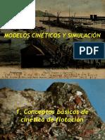 Modelos Cinéticos y Simulación i
