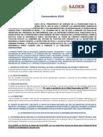 Concurrencia en las entidades federativas 2019