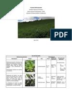 Actividad 3_Plan de Fertilización