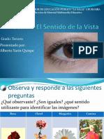 sesinsentidodelavista-101002100549-phpapp01.pdf