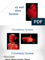5 Components of Circulatory System