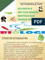 PPT SITOKELETON