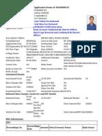 status.pdf