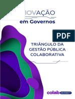 Triangulo da Gestão publica Colaborativa
