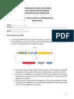 Taller de Repaso_variabilidad Genetica_segunda Parte