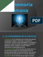lamemoriahumana-120226122942-phpapp02