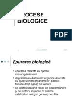 epurarea Procese-Biologice