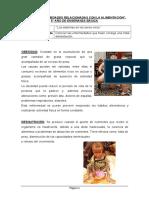 Ficha 1 Enfermedades Relacionadas a La Alimentacion 105354 20190611 20190530 144515
