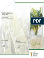 Brochure Spinach
