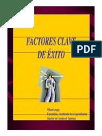 Factores Clave Exito_1