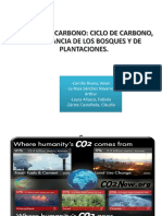 Ciclo_carbono_quimica.pdf