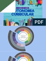 Autinomía Curricular- Academia