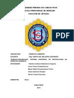 Sistema Universal de Proteccion de Ddhh