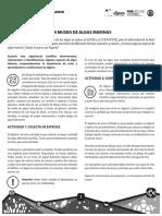 10 Museo de Algas Marinas Estudiante
