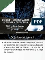Unidad 1 Coordinacion Nerviosa y Endocrina Para Guia