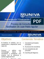 Apoyos Visuales Proceso de Consultoria