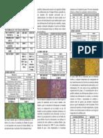 Analisis Microestructural Mediante Técnica de Matalografia a Color