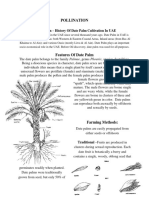 Biology - Pollination Case Study | Date Palm Cultivation In UAE