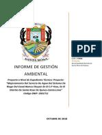 INFORME DE GESTION AMBIENTAL - YASO.docx