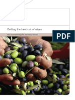 getting the best out of olives