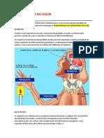 Fisiopatologia Del Dolor