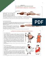 Guia de Estudio Prueba Solemne Historia y Geografia