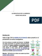 Cap.08 -Las Moleculas de La Herencia Acidos Nucleicos
