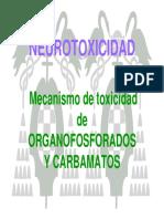 t12-neurotoxicidad-pagina