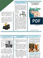 151216079-Triptico-Estructura-Economico-Venezuela-1899-1935.docx
