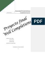 proyecto completacion