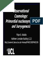 3136Cosmo5_9_nucleo