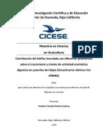 130808_Cultivo de Tilapias en Sistemas Con Bioflocos