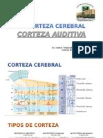 LA CORTEZA AUDITIVApptx.pdf