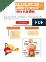 Sistema Digestivo Para Segundo de Primaria