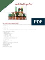 Cactus modelos.pdf
