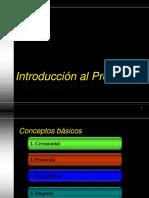 Introduccion Al Protocolo