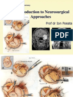 An Introduction to Neurosurgical Approaches 2010 SCURT FINAL