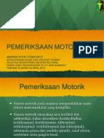 Presentation2 motorik