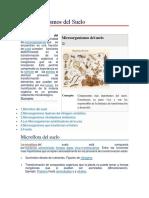 Microorganismos del Suelo.docx