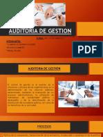 auditoria de gestion