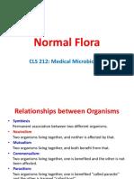 6 Normal Flora medical microbiology