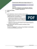 Resumen Ejecutivo Real Ayacucho