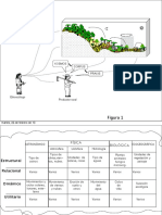 seccETNOECOLOGIA imageneskosmoscorpuspraxis